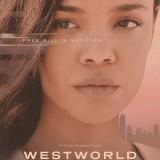 westworldposters3.th.jpg