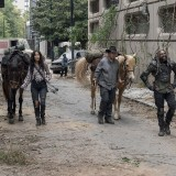 the-walking-dead-episode-1014-look-at-the-flowersl-promotional-photo-16.th.jpg