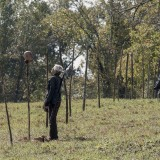 the-walking-dead-episode-1014-look-at-the-flowersl-promotional-photo-23.th.jpg