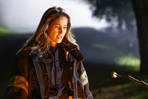 station 19 episode 313 dream a little dream of me promotional photo 31