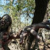 607_fear-the-walking-dead_photo04.th.jpg